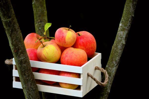 apple, goldparmäne, box