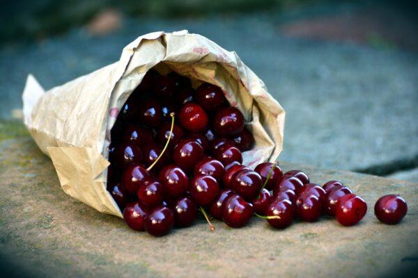 cherries, fruit, sour cherries